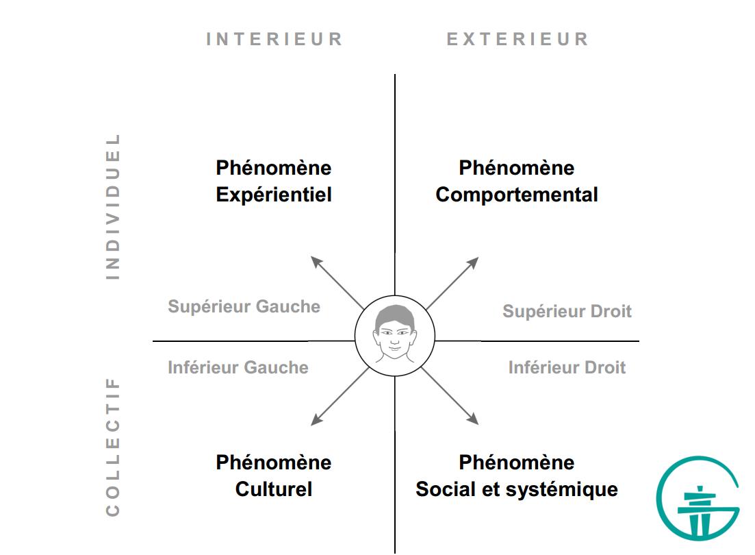 Figure 3. Les quatre quadrants d'un individu.