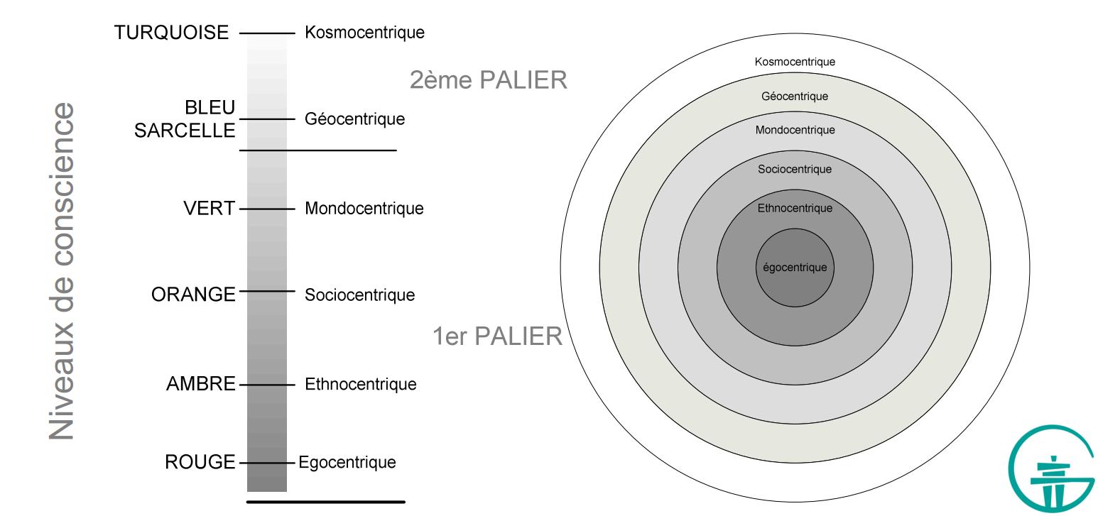 Figure 6. Élargissement de l'identité (gauche) et les qualités imbriquées des niveaux qui se transcendent et s'incluent l'un l'autre (droite).